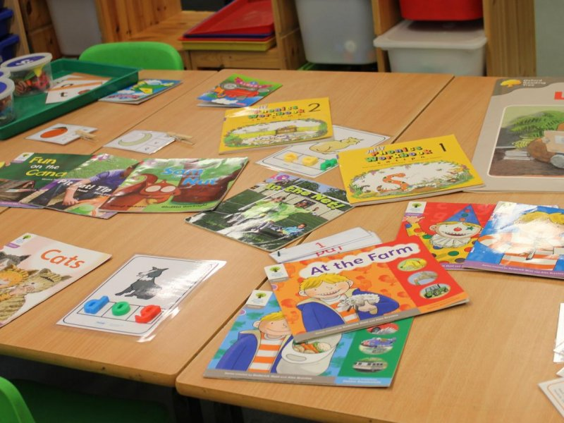 Reading resources in Reception